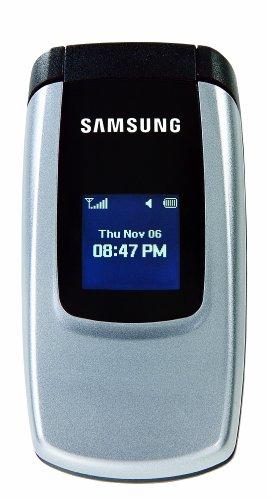 Samsung T201G Prepaid Phone (Net10)