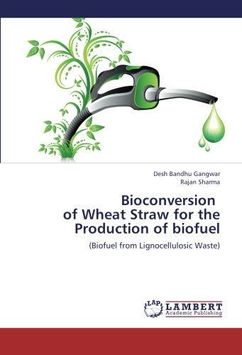 Bioconversion   of Wheat Straw for the Production of biofuel: (Biofuel from Lignocellulosic Waste)