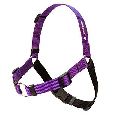 SENSE-ation No-Pull Dog Harness - Purple