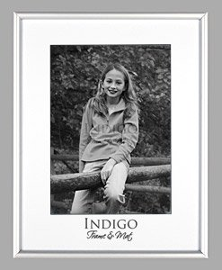 16x20 Frosted Silver Aluminum Metal Picture Frame, Glass