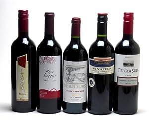 セレクション 赤ワイン 5本セット ( チリワイン 2本 フランスワイン 1本 イタリアワイン 1本 スペインワイン 1本)計750ml×5本