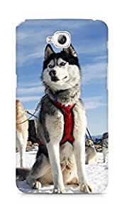 Amez designer printed 3d premium high quality back case cover for Lg Gpro Lite (Husky Dog Alaska Snow)