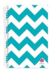 Bloom Daily Planners 2016-17 Academic Year Daily Planner - Passion/Goal Organizer - Fashion Agenda - Weekly Diary - Monthly Datebook Calendar - August 2016 - July 2017 - 6\