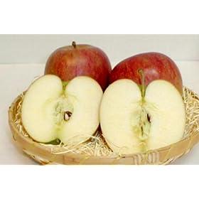 長野産 「信州リンゴ」シナノスイート10kg 中玉36~40個入り: 食品&飲料