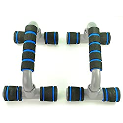 Dolphy Blue Push Up Bars Dip Stand
