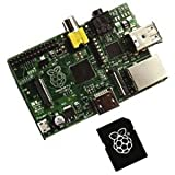 Raspberry Pi Type B 512MB+8GB SDカード(OSインストール済)