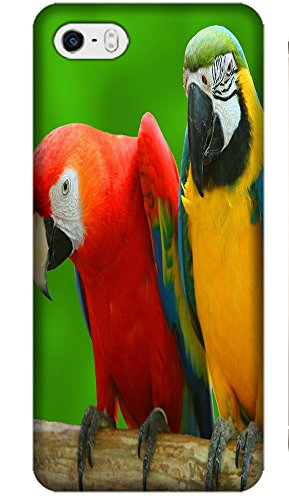 Fantastic Fay Apple Accessories Happy Colorful Mother Childern Parrot Fly The Tree Special Design Cell Phone Cases Covers For Iphone 5C No.1