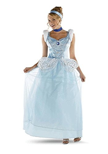 Cinderella Deluxe Costume - Large - Dress Size 12-14