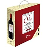 img - for Gran Diccionario Del Vino book / textbook / text book