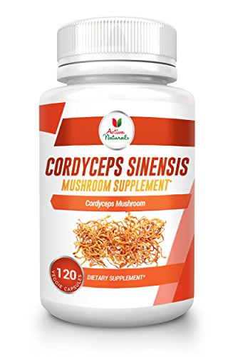 Buy Cordyceps Sinensis Now!
