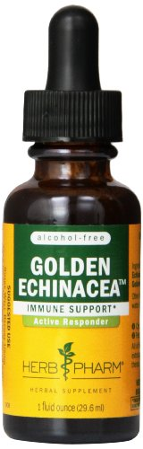 Herb Pharm Golden Echinacea Glycerite Supplement, 1 Ounce