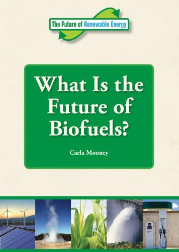 What Is the Future of Biofuels? (Future of Renewable Energy (Reference Point))