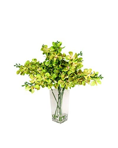 Creative Displays Ground Orchids in Glass Vase, Green