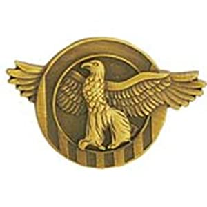 "Amazon.com: WWII Ruptured Duck Honorable Discharge Pin 7/8"": Toys"