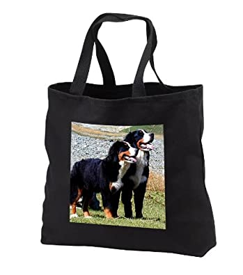 Dogs Bernese Mountain Dog - Bernese Mountain Dog - Tote Bags - Washed Denim Tote Bag 14w x 14h x 3d