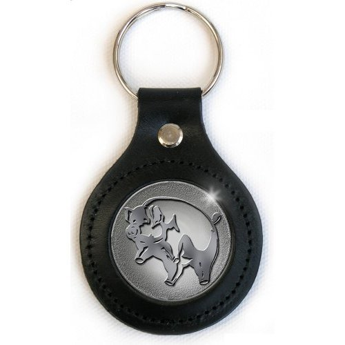 Pink Floyd - Keyring Pic Icon (in One Size)