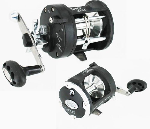 Fishlander reels tsunami precision star drag fishing for Tsunami fishing reels