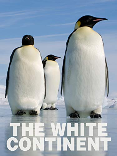 The White Continent
