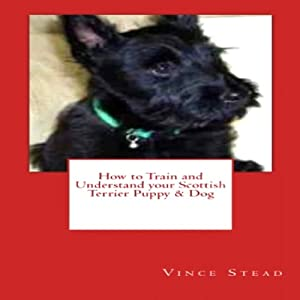 How to Train and Understand your Scottish Terrier Puppy & Dog | [Vince Stead]