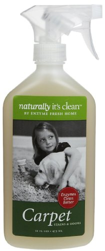 Naturally It's Clean Carpet, Enzyme Stain/Odor Remover-Citrus-18oz