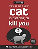 How to Tell If Your Cat Is Plotting to Kill You (flag)