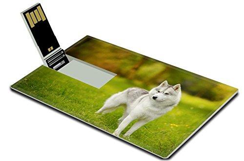 luxlady-32gb-usb-flash-drive-20-memory-stick-credit-card-size-image-id-36455048-portrait-of-female-s