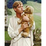 "ANTHONY ANDREWS AS SEBASTIAN FLYTE FROM BRIDESHEAD REVISITED #1 - COLOUR Movie Photo - LARGE wall POSTER Size Print - SIZE 25x20"" (60x50cm)"