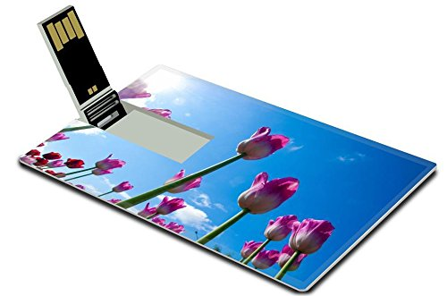 Luxlady 8GB USB Flash Drive 2.0 Memory Stick Credit Card Size ID: 40731620 Tulips Bulbous plant seeds lily flowers with large cup shaped Beautiful bouquet of tulips colorful tulips tulips in spring