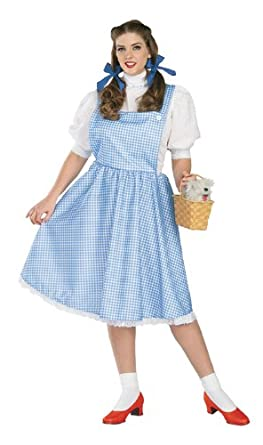Wizard Of Oz Secret Wishes Dorothy Costume