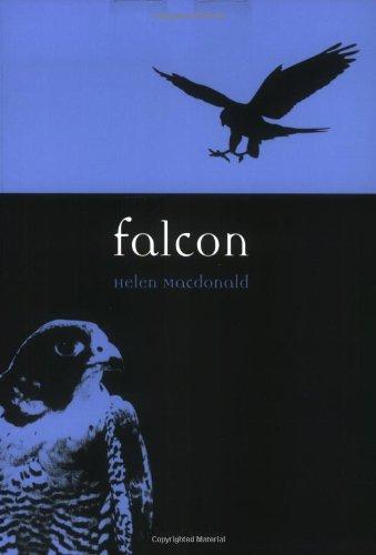 Falcon (Animal)