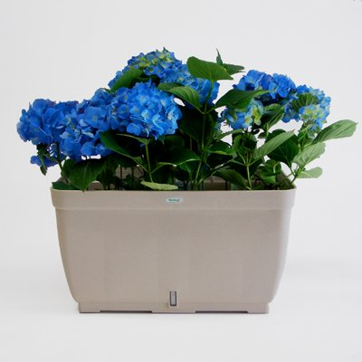Buy Riviera EVA Self Watering Planter Box