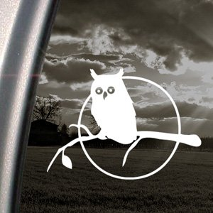 Owl In Tree Decal Car Truck Bumper Window Sticker (Owl Auto Decal compare prices)