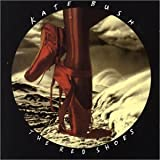 Red Shoes by Kate Bush (1993-11-02)