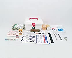 IndoSurgicals All Purpose First Aid kit, Milton Box with 21 Items