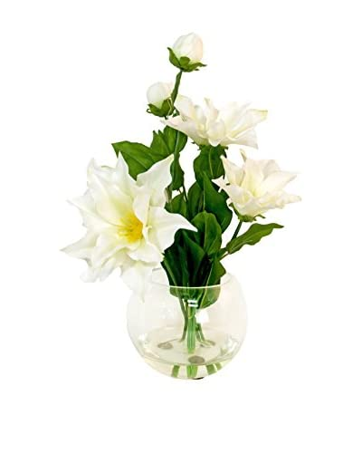 Creative Displays Clematis in Glass Vase, White/Green
