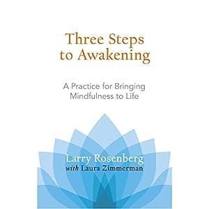 Three Steps to Awakening Audiobook
