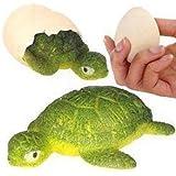 Turtle Egg Magic Growing Pet