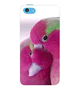 ColourCraft Love Birds Design Back Case Cover for APPLE IPHONE 5C