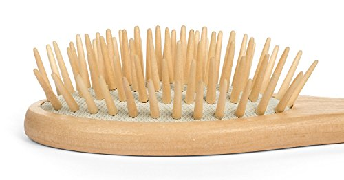 Paddle Hair Brush - Dry Scalp Bamboo Paddle Brush for Hair Detangler, Dandruff Scalp, Travel size by Beyond 100 Naturals (Hair Brushes Cheap compare prices)