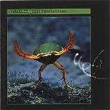 Soil Festivities by Vangelis (1990-10-25)