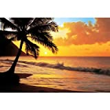 (100x144) Pacific Sunset Huge Wall Mural Art