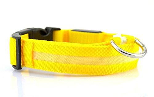 Liroyal Nylon Led Dog Night Safety Collar Flashing Light Up W/Circular Pendant Collar Yellow