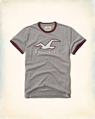 HOLLISTER(ホリスター) Tシャツ メンズ グレーS 並行輸入品