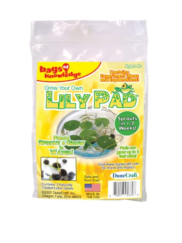 Dunecraft Grow Your Own Lily Pad Science Kit - 1