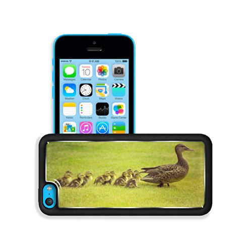 Animal Wildlife Duck Baby Cute Quack Mother Bird Apple Iphone 5C Snap Cover Premium Aluminium Design Back Plate Case Customized Made To Order Support Ready 5 Inch (125Mm) X 2 3/8 Inch (62Mm) X 3/8 Inch (12Mm) Luxlady Iphone 5C Professional Cases Touch Acc front-1052457