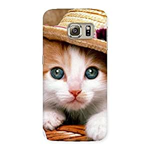 Special Cute Kitty Hat Multicolor Back Case Cover for Samsung Galaxy S6 Edge Plus