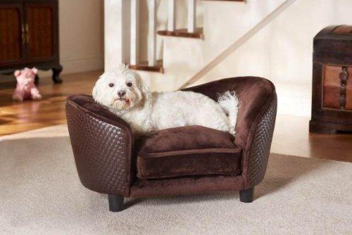 Raised Dog Beds For Large Dogs Uk Webnuggetz Com