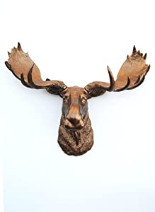 The Cola | Bronze Resin Moose Head | Bronze Moose Head Wall Decor | Stag Head Wall Mount | Faux Taxidermy | Animal Head Wall Hanging Sculpture | Animal Mounts | Trophy Taxidermy