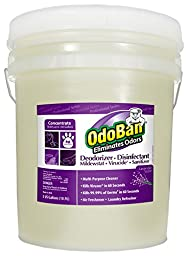 OdoBan 911162-5G Concentrate All Purpose Cleaner and Disinfectant Odor Eliminator, Lavender Scent, 5 gal