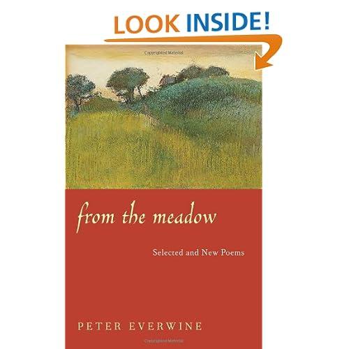 Meadow Surprises Poem